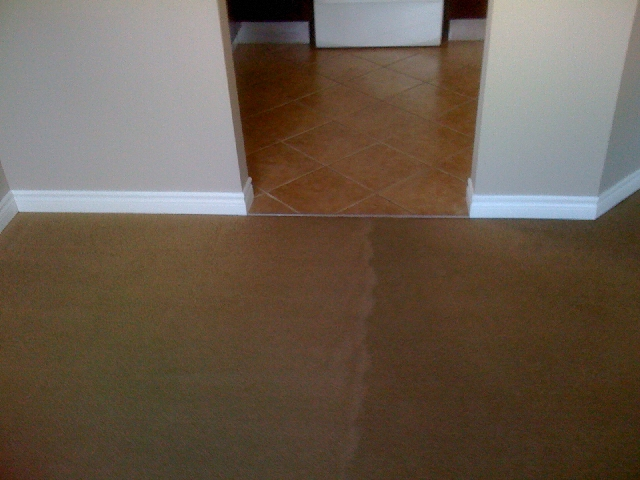 Go Green Carpet Cleaning -  Residential Cleaning