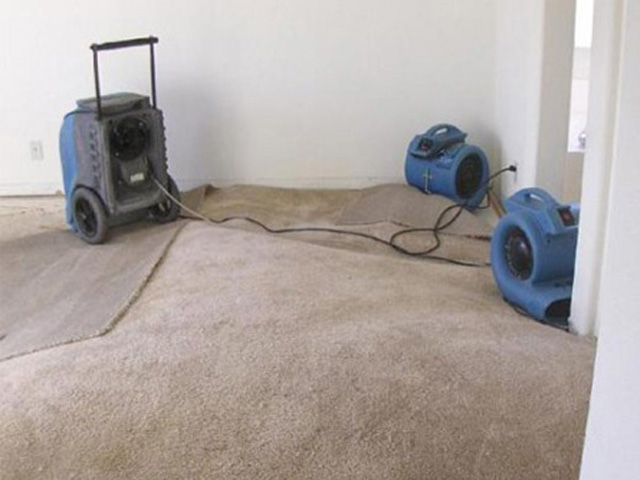 Go Green Carpet Cleaning -  Restoration